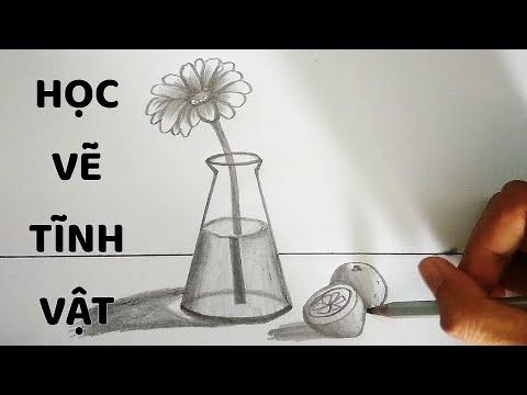 Vẽ Tĩnh Vật Lọ Hoa và Quả bằng bút chì – How to draw Still Life #3 | Tóm tắt các kiến thức về ve tinh vat lo va qua lop 8 mới cập nhật
