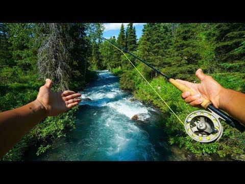 Fly Fishing A SMALL Alaskan Creek!!!