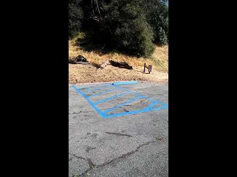 CA State Park Parking Problems