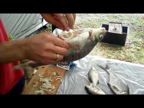 Гениально | Копчение-Наоборот свежепойманной рыбы на рыбалке