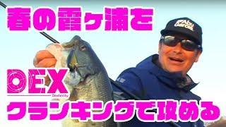 DEX CR53MR 解説動画