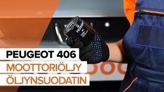 PEUGEOT 406 Öljynsuodatin asentaa : videokäsikirjat