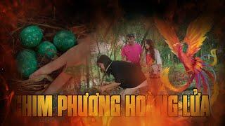 CHIM PHƯỢNG HOÀNG LỬA | Hai Anh Em Phần 94 | Phim Hài Mới Nhất | Phim Ngắn Hài Hước Gãy TV
