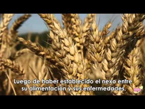metodo-del-dr-seignalet-(traducido-al-español)