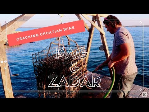 Cracking Croatian Wine in Pag & Zadar
