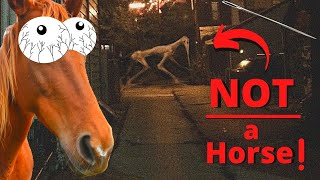 Horror Theory: What Is The NEEDLE Horse? ( Trevor Henderson creatures )