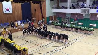 2018 고흥고 체육대회 놋다리 밟기 (2년)