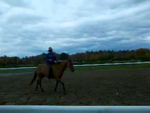 Guy McLean @ Saratoga Race Track