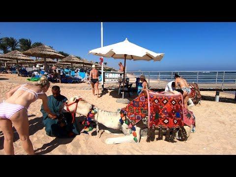Amazing Sharm El-Sheikh