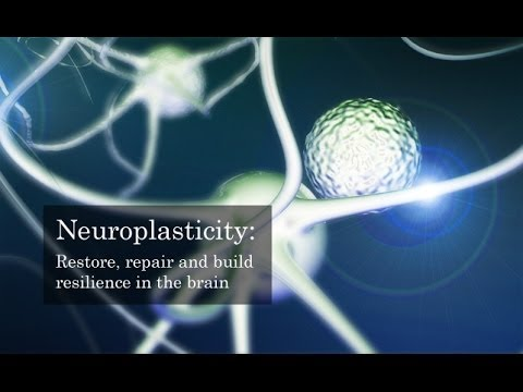 "Neuroplasticity - Effects on Balance Disorders - from  ""The Br@in that changes itself"""