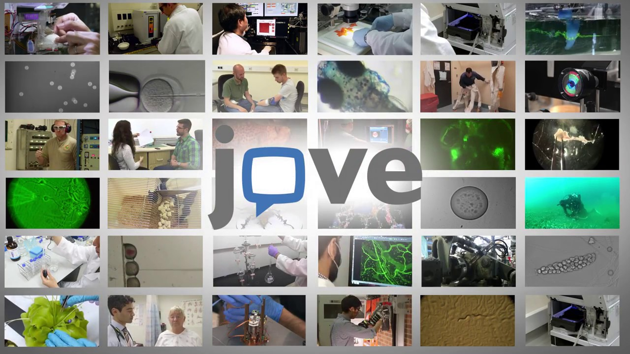 How to Create a JoVE Test