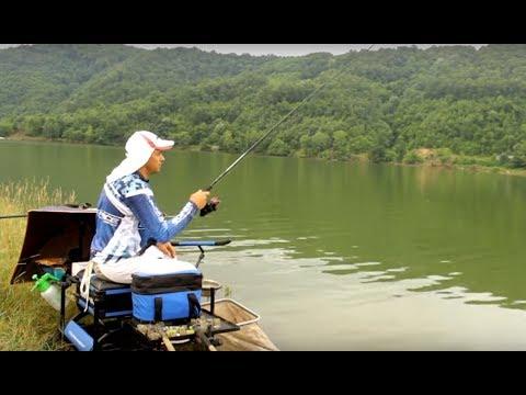 UŽIVO SA VODE - lov deverike feeder tehnikom na Ćelijama sa Darkom Todosijevićem
