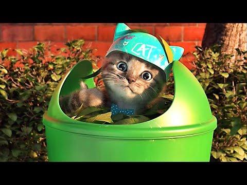 Little Kitten Preschool - My Favorite Cat  - Videos For Kids