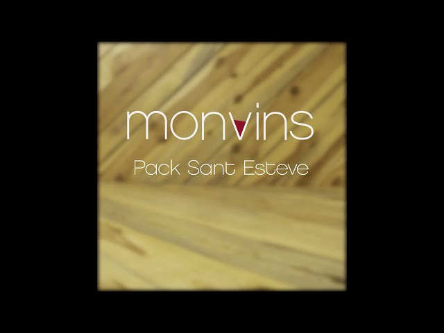 MONVINS Campanya de Nadal 2020