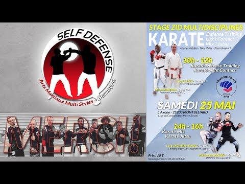 Stage ZID Franche-Comté - Karaté Multi Disciplines - 2019