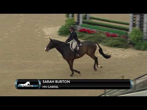 Baixar Front Row Sport Horses LLC - Download Front Row Sport