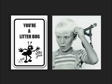YOU'RE A LITTER BUG  Jay North DENNIS THE MENACE PSA