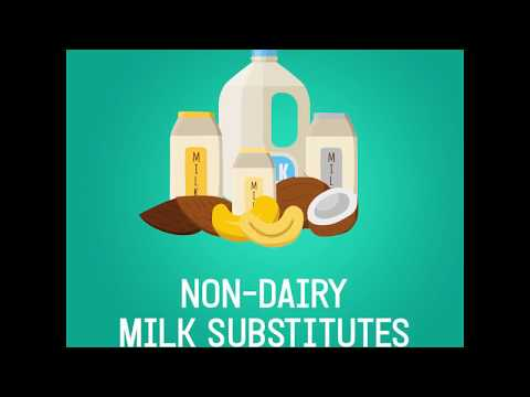 Non-Dairy Milk Substitutes