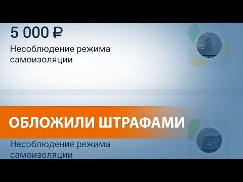 Сотни москвичей получили штрафы, не выходя из дома