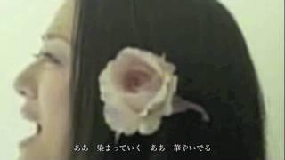 山田タマル - Love you ROSE