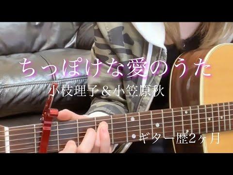mia猫 ちっぽけな愛のうた 練習中 ギター歴2ヶ月