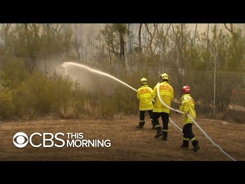 u.s.-firefighters-lend-a-hand-in-australia-as-bushfires-ravage-the-country