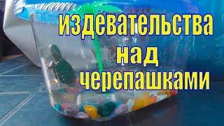 Как в Крыму издеваются над красноухими черепахами