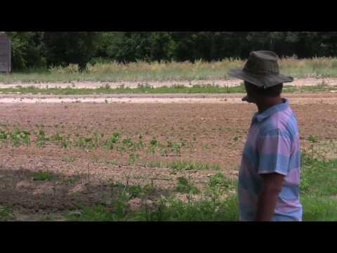 Brothers Farm Bio