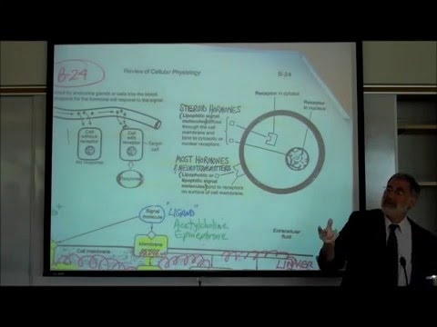 CELL MEMBRANES by Professor Fink