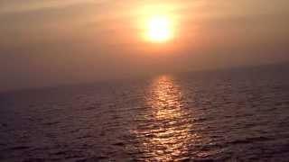 SKG X TANYA WELLS - Na Jaane Saiyan REMIX