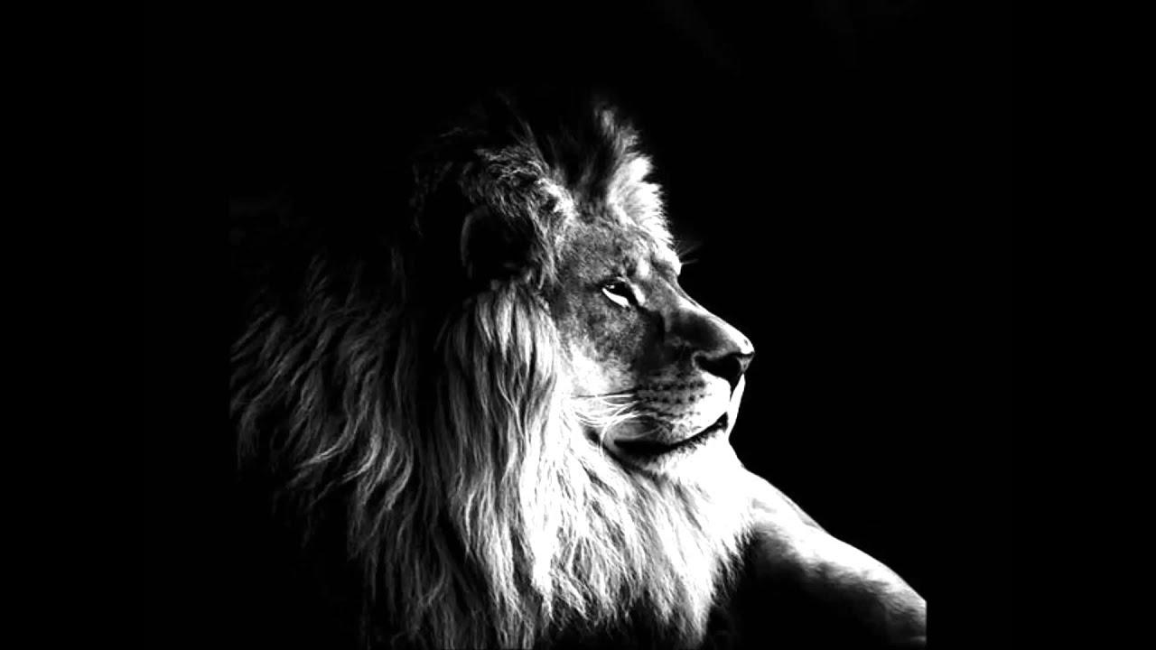 de leeuw juda elly en rikkert