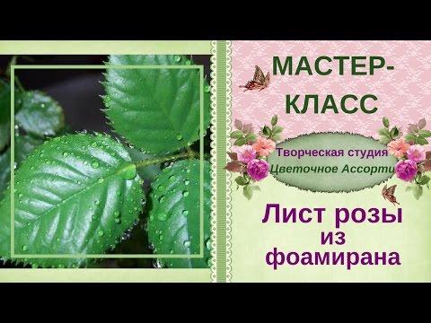 Листья ✿розы✿ из фоамирана. Пошаговый мастер-класс, как сделать листья ✿розы✿ из фоамирана