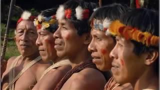 Video Tribus nativas aisladas del mundo moderno download MP3, 3GP, MP4, WEBM, AVI, FLV Agustus 2018