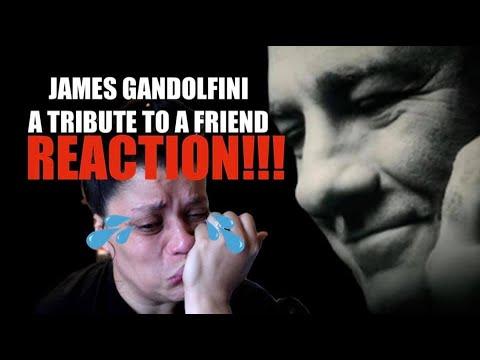 Download James Gandolfini Tribute to a Friend - REACTION!!!