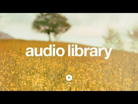 Sioux Falls - Silent Partner (No Copyright Music)