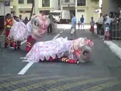 Lion Dance (twin lion..funny)