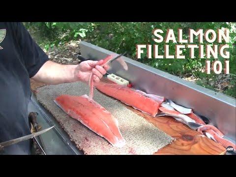 Salmon Filleting 101