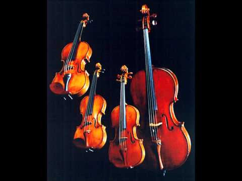 Carmen Suite No. 2- The Reading Symphony Junior String Orchestra
