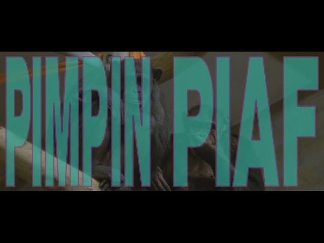 Pimpin Piaf (a short film)