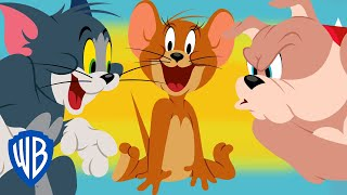 Tom & Jerry | Tom VS Spike Compilation | WB Kids