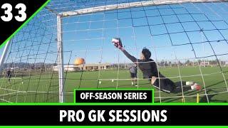 Extension Saves & Plyometrics | Goalkeeper Training | Ep.8 Off-Season Series | Pro GK