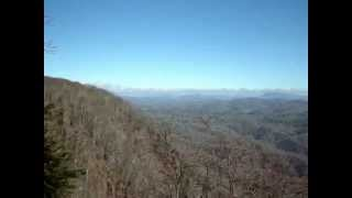Nature Sounds from Asheville, NC USA ~ 2012 thanksgiving
