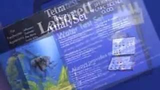 Запуск аквариума  Учебное пособие