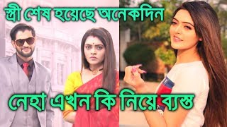 টেলি নায়িকা নেহা অমনদীপ এখন একটি বিশেষ কাজে ব্যস্ত। Stree Serial Actress Neha Amandeep