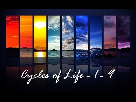 NUMEROLOGY - The Meaning Of Your Cycle Numbers - www.innerworldrevealed.com - Aditi Ghosh