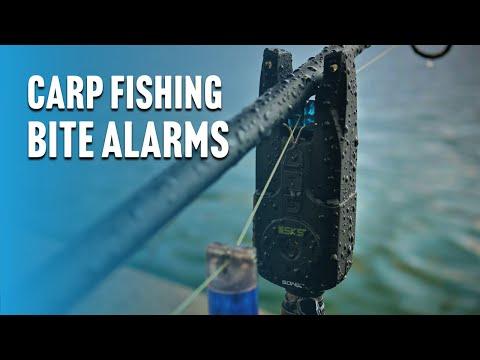 Carp Fishing BITE
