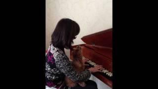 チェンバロに合わせてソプラノで歌い上げるトイプードルのりんちゃんです.