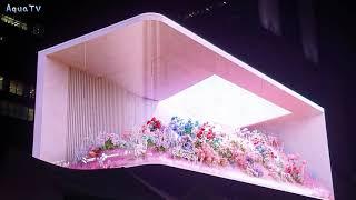 BLOSSUM: Flower Show 블라썸 아트 in…