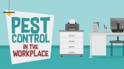 Pest Control in the Workplace