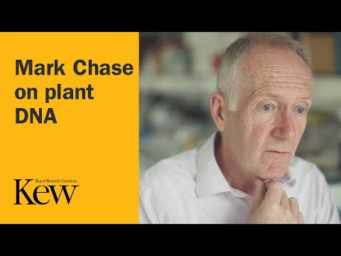 The Plant Family Tree - Mark Chase on plant DNA